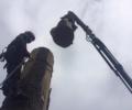 Katonah NY Tree Service