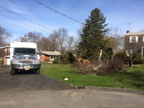 Valhalla NY Tree Removal